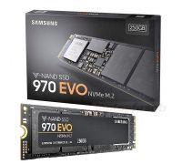 SSD-накопитель M.2 NVMe 250Гб Samsung 970 EVO Plus (MZ-V7S250BW)